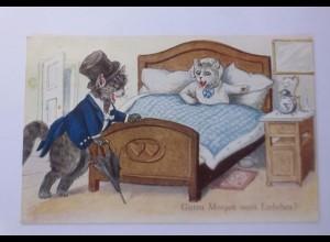 """Personifiziert, Katzen, Zylinder, Bett 1930 ♥ (61733)"