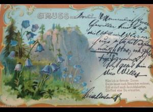 """""""Gruß aus, Berge, Blumen, Spruch"""" 1900 ♥"""