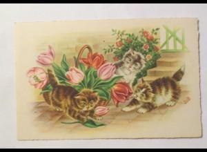 """""""Katzen, Korb, Tulpen"""" 1930, sig. Jub ♥"""