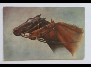 """Pferde"" 1910 ♥ (33514)"