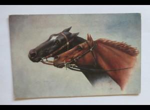 """Pferde"" 1914 ♥ (33516)"